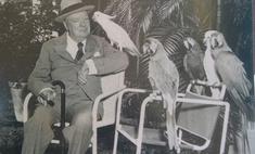 Вставную челюсть Уинстона Черчилля продали на аукционе