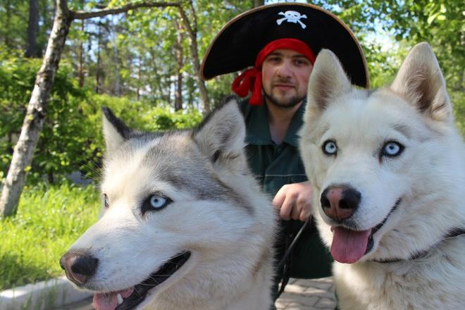 Хаски в зоопарке и пират