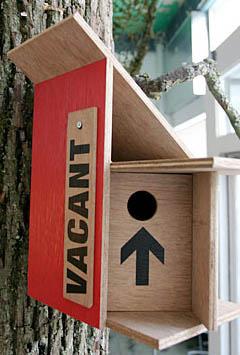 Урбанистическое творение для пернатых жителей мегаполиса
