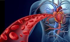 Рецепты народной медицины: очищение крови