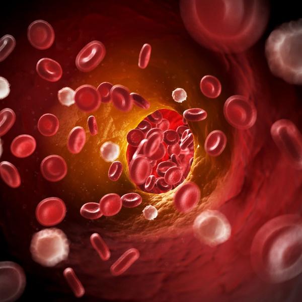 Норма общего холестерина в крови у мужчин после 55 лет
