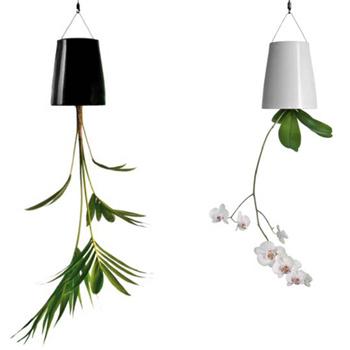Система полива комнатных растений