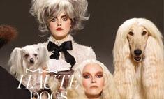 MAC посвятил новую коллекцию макияжа собакам