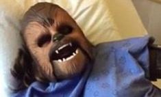 Такого вы еще не видели: Чубакка из «Звездных войн» стал мамой!
