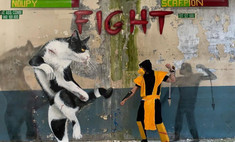 30 «выпрыгивающих из стен» граффити от французского коллектива