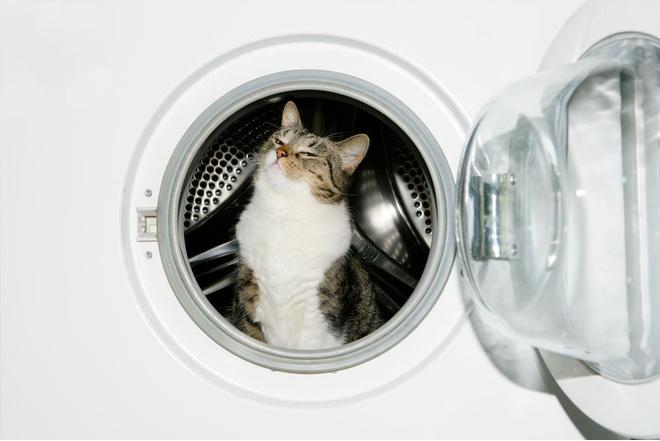 лимонная кислота для стиральной машины