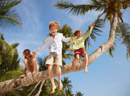 Дети прыгают с пальмы