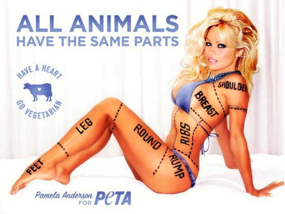 Знаменитости, раздевшиеся в защиту животных