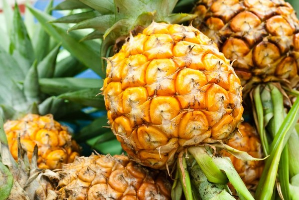 Дозревание ананаса
