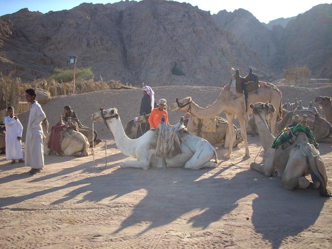 Пустынный колорит