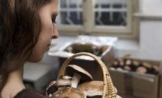 Как проверить грибы на съедобность: основные способы