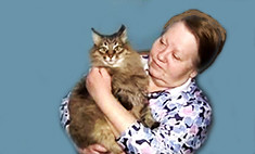 История обнинской кошки, спасшей малыша, – выдумка!