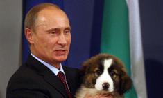 Владимир Путин ответил на вопросы россиян