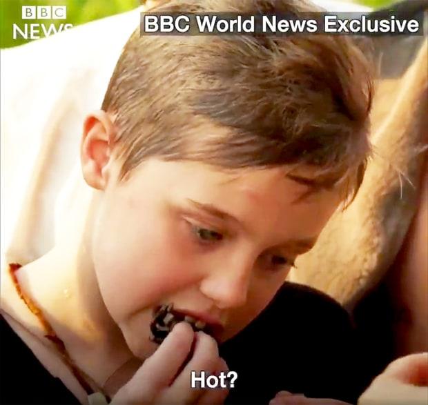 Анджелина Джоли накормила детей пауками