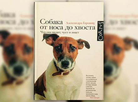 А. Горовиц «Собака от носа до хвоста. Что она видит, чует и знает»