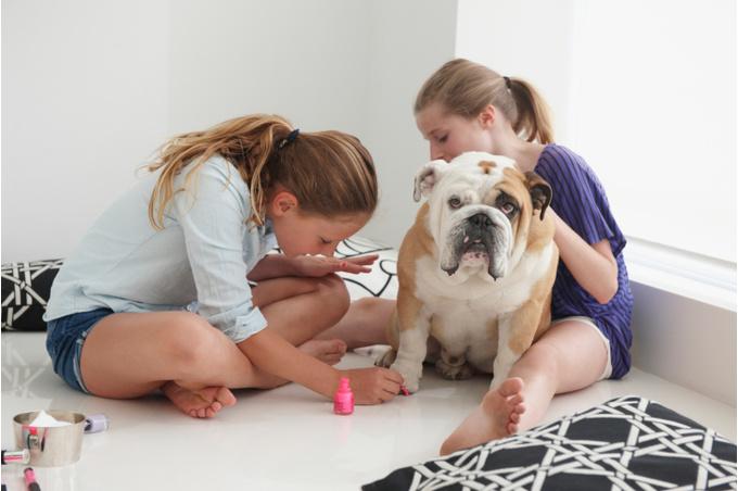 Девочки играют с собакой