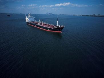 Столкновение корабля «Александра» с неизвестным судном унесло жизни почти всех членов экипажа