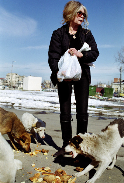 Актриса Брижит Бардо писала воронежским властям о помощи бездомным животным