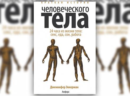 Дж. Эккерман «Краткая история человеческого тела. 24 часа из жизни тела: секс, еда, сон, работа»
