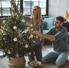 10 советов, как выбрать хорошую елку на Новый год