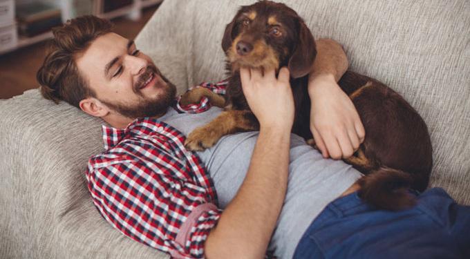Человек и животное: понимание без слов