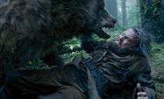 Медведицу из «Выжившего» сыграл каскадер