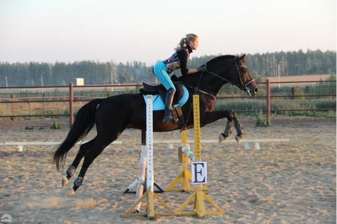 верховая езда в Липецке
