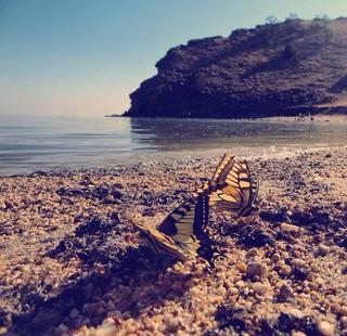 лето с Psychologies 6