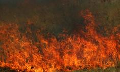 Природные пожары в России продолжаются