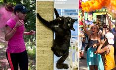 Как прошли выходные в Уфе: амазонки, котики и цветной дым