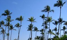 3 способа встретить Новый год на пляже