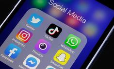 СМИ перечислили список «социально значимых» сайтов с бесплатным трафиком, которые обещал Путин