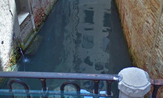 В Венеции из-за карантина очистились каналы, появилась рыба и вернулись лебеди (видео)