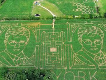 Изображение Гарри Поттера украсило кукурузное поле