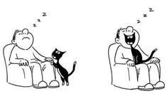 15 карикатур про котов