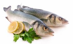 Рыба – ценный питательный продукт