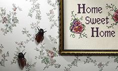12 способов избавиться от «домашних» насекомых