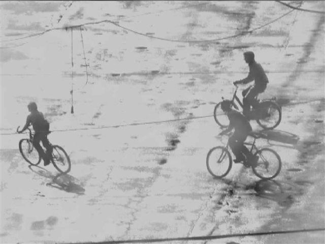 Ботто и Бруно, фотография