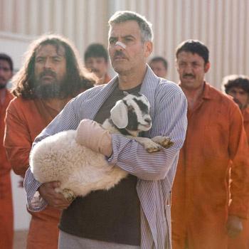 Герой Клуни убивает взглядом козла, о чем сожалеет на протяжении всего фильма.