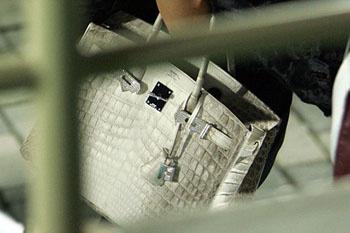 Новая сумка Пош: изысканный дизайн, самая лучшая кожа и украшения из трехкаратных бриллиантов