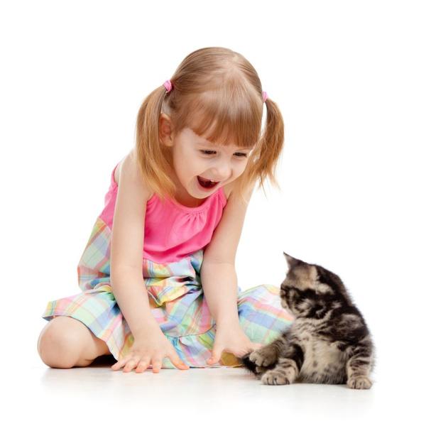 Болезнь от кошачьих царапин