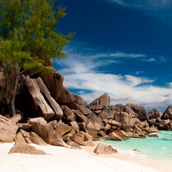 На романтичные и очень недешевые Сейшельские острова можно слетать в среднем за 2000 долларов (за человека).