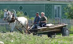 Забалуйка, Ломы, Сельдь: почему так необычно называли села и деревни?