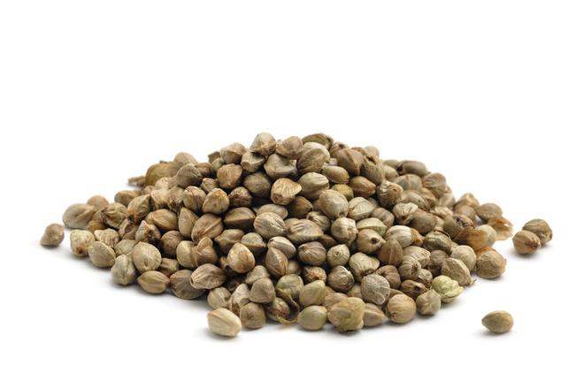 Семена конопли обладают противовспалительными свойствами