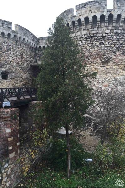 Крепость Калемегдан в Белграде