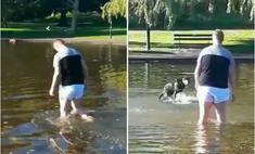 Мужик полез в пруд доставать пса, но тот наотрез оказывается прекращать свои игры (видео)