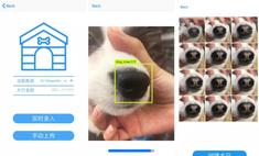 китайский стартап поможет найти потерявшуюся собаку отпечатку носа