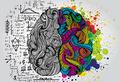 Ты – это твой мозг?