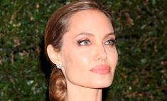 Анджелине Джоли запретили летать на собственном самолете
