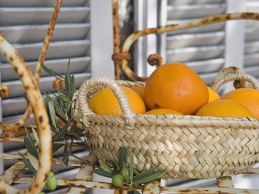 Плоды цитрусовых станут более вкусными и питательными